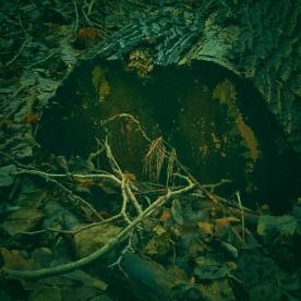 Stock (grön), sjön Kranglan.